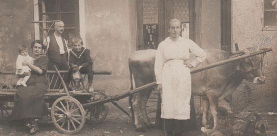Domačija Adamičevih v Ribnici leta 1921.